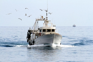 Solent Engineering Services Commercial Fishing